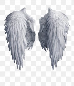 White Angel Wings - Angel Wing Clip Art PNG
