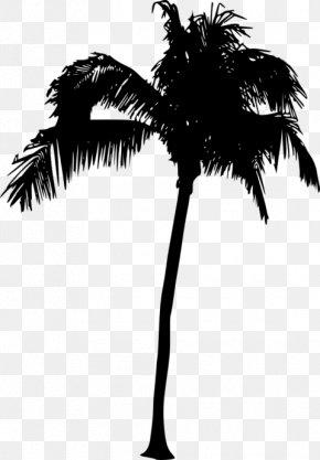 Silhouette - Asian Palmyra Palm Arecaceae Silhouette Sabal Palm Tree PNG