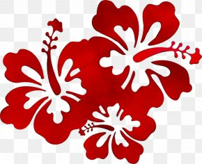 Hawaii Borders And Frames Clip Art Luau Flower Designs PNG