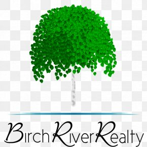 Walindi Plantation Resort - Birch River Realty Birch River Drive Achasta Tree Brand PNG
