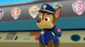 Paw Patrol - Puppy Dog Sea Patrol: Pups Save Puplantis Pups And The Ghost Pirate Pups Save The Easter Egg Hunt PNG