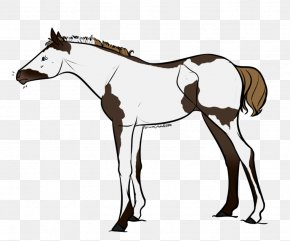 Flaxen Liver Chestnut Horse - Foal Mustang Mare Mane Stallion PNG