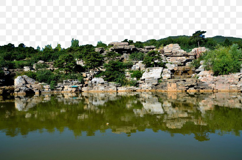 Beijing Botanical Garden Shijingshan District Fragrant Hills Park Beijing Chaolai Forest Park Yellowstone National Park, PNG, 820x543px, Beijing Botanical Garden, Bank, Beijing, Chaoyang District, Forest Download Free