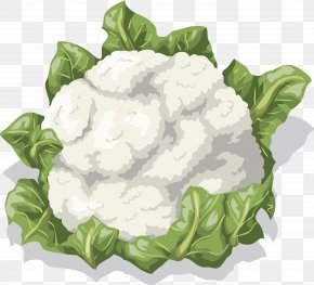 Cauliflower Vector - Cauliflower Vegetable Food Clip Art PNG