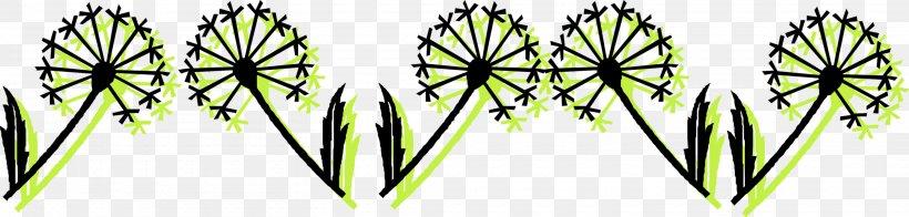 Leaf Plant Stem Grasses Symmetry Line, PNG, 2920x700px, Leaf, Commodity, Grass, Grasses, Plant Download Free