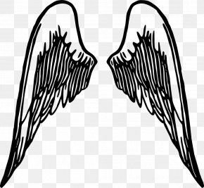 Wings Cliparts - Angel Wing Clip Art PNG