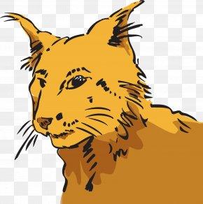 Kitten - Whiskers Kitten Wildcat Tiger Lion PNG