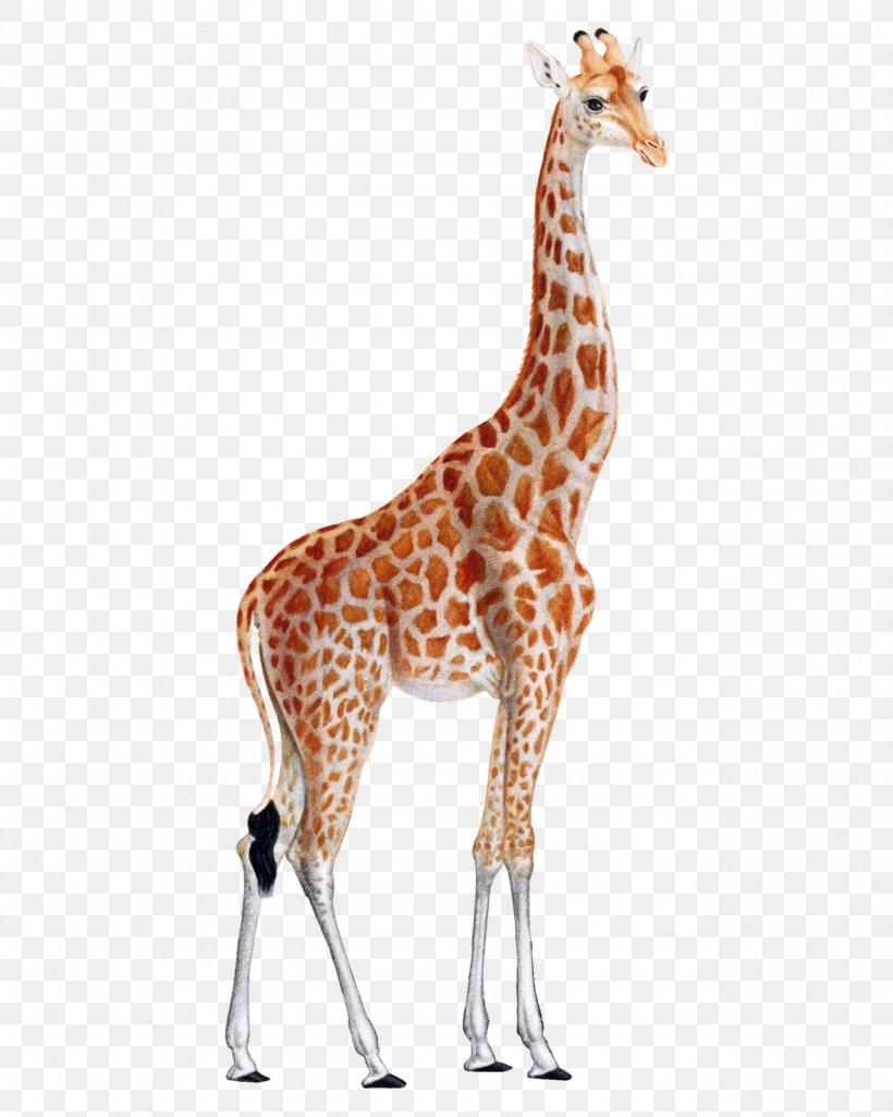 - Giraffe Printing Animal Print Printmaking Art, PNG, 1280x1600px