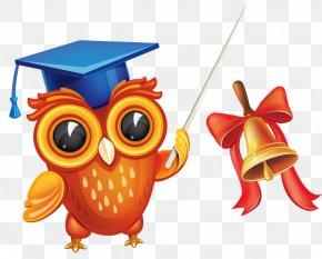 Fishing Hat Bird Bell - School Blackboard Board Of Education Clip Art PNG