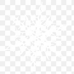 Snowflake Image - Sahara Rain And Snow Mixed Winter Weather Forecasting PNG