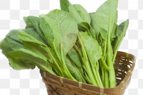 The Basket Of Kale - Chinese Broccoli Spring Greens Vegetable Kale Spinach PNG