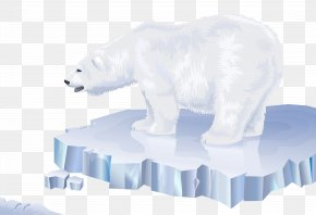 White Bear Transparent Clip Art Image - Polar Bear Arctic Polar Regions Of Earth PNG