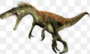 Dinosaur - Herrerasaurus Staurikosaurus Theropods Eoraptor Lunensis Dinosaur Size PNG