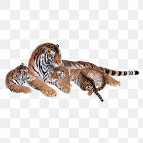 Tiger - Siberian Tiger Lion Bengal Tiger Cat Animal PNG