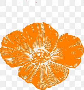Red Poppy - Remembrance Poppy Clip Art PNG