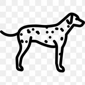 Dalmatian Dog French Bulldog Bernese Mountain Dog Jack Russell Terrier Greyhound PNG