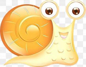 Smile Sea Snail - Snail Cartoon PNG