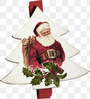 Christmas Tree On The Santa Claus - Pxe8re Noxebl Santa Claus Christmas Tree Christmas Decoration PNG