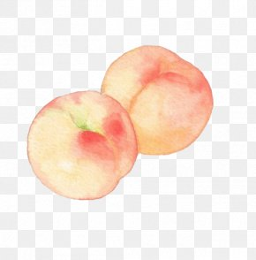Watercolor Peaches - Princess Peach Watercolor Painting Drawing PNG