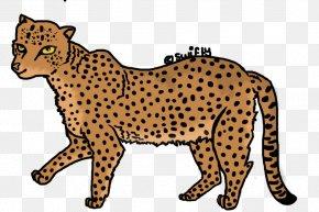 Cheetah - Cheetah Leopard Jaguar Wildcat PNG