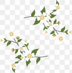 Jasmine Cane Title Box - Arabian Jasmine Euclidean Vector Floral Design PNG