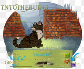 Norwegian Forest Cat - Art Advertising Cat Pet PNG