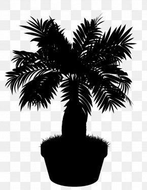 M Date Palm Flowerpot Palm Trees - Asian Palmyra Palm Black & White PNG