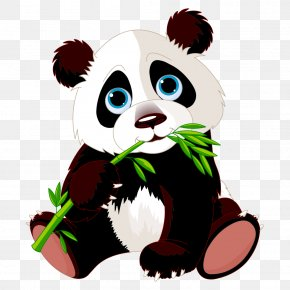 Panda Eating Bamboo - Giant Panda Stock Photography Clip Art PNG