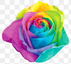Multicolored Rainbow Rose Transparent Clip Art Image - Flower Rainbow Rose Clip Art PNG