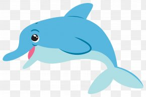 Dolphin Picture - Common Bottlenose Dolphin Tucuxi PNG