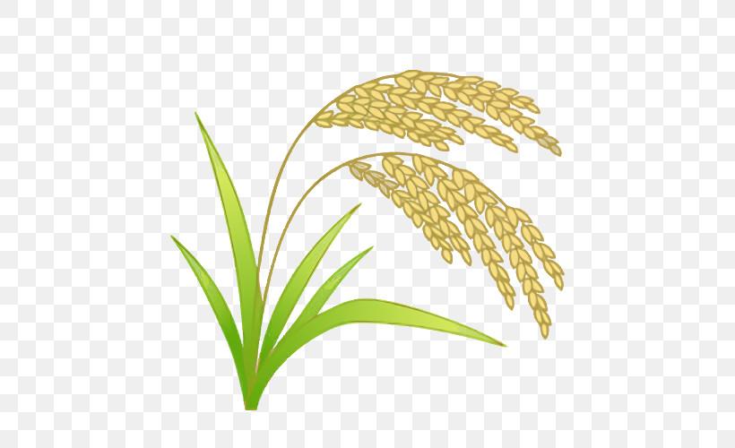Leaf Plant Stem Grasses Commodity Line, PNG, 500x500px, Leaf, Biology, Commodity, Grasses, Line Download Free