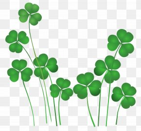 St Patricks Day Shamrocks Decor PNG Clipart - Saint Patrick's Day Shamrock Leprechaun Irish People Clip Art PNG