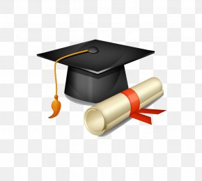Bachelor Of Cap And Diploma - Square Academic Cap Graduation Ceremony Hat Clip Art PNG