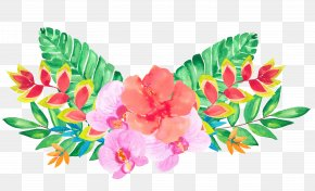 Floral Decoration - Floral Design Flower Illustration PNG