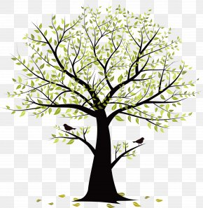 Small Tree Vector Birds - Twig Tree Bird PNG