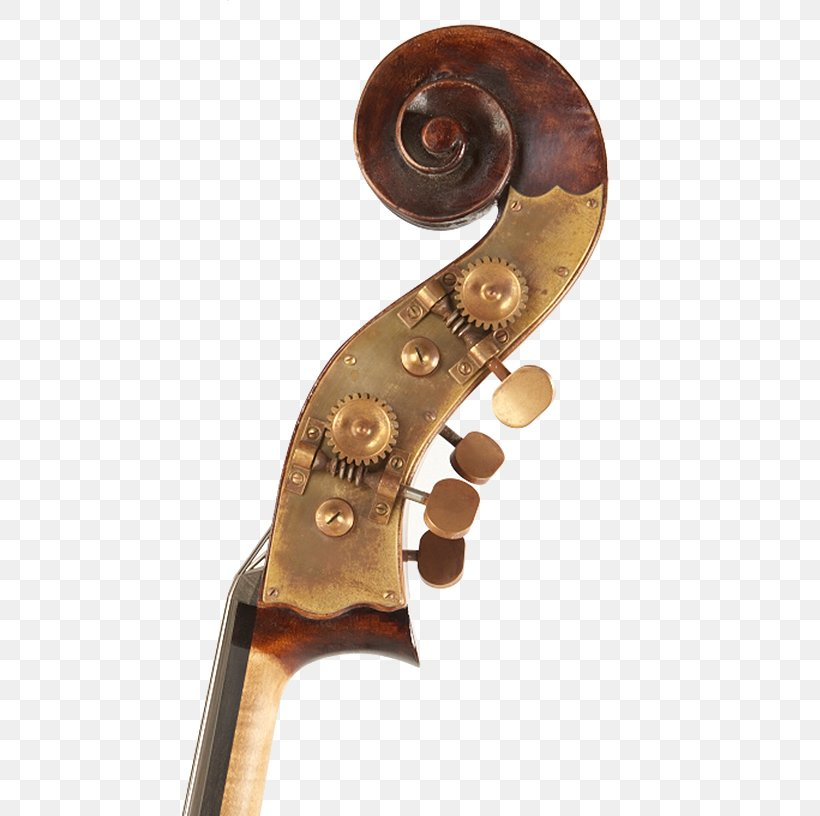 Cello Double Bass Violin Scroll Png 500x816px 19th