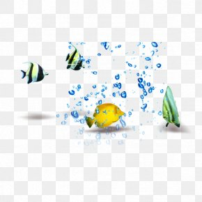 Fish In The Water - Fish PNG