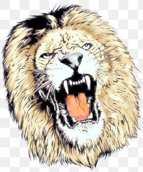 Clipart Lion Head Download - Lion Tiger Cat Roar Animal PNG