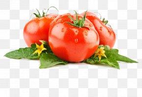 Tomato - Vegetable Tomato Lettuce Fruit PNG