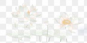 Elegant Lotus Fig. - Flora Cut Flowers Twig Plant Stem PNG