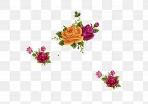 Chrysanthemum - Cut Flowers Chrysanthemum Floral Design PNG