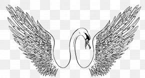 Swan Sketch Pattern - Black Swan Visual Arts Drawing Illustration PNG
