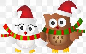 Christmas Owls Transparent Clip Art Image - Owl Santa Claus Christmas Ornament Clip Art PNG