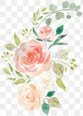 Flowers Watercolor Transparent - Watercolor Painting Floral Design Flower Rose PNG