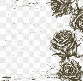 Black And White Roses Border Vector Image - Black And White Beach Rose Visual Arts PNG