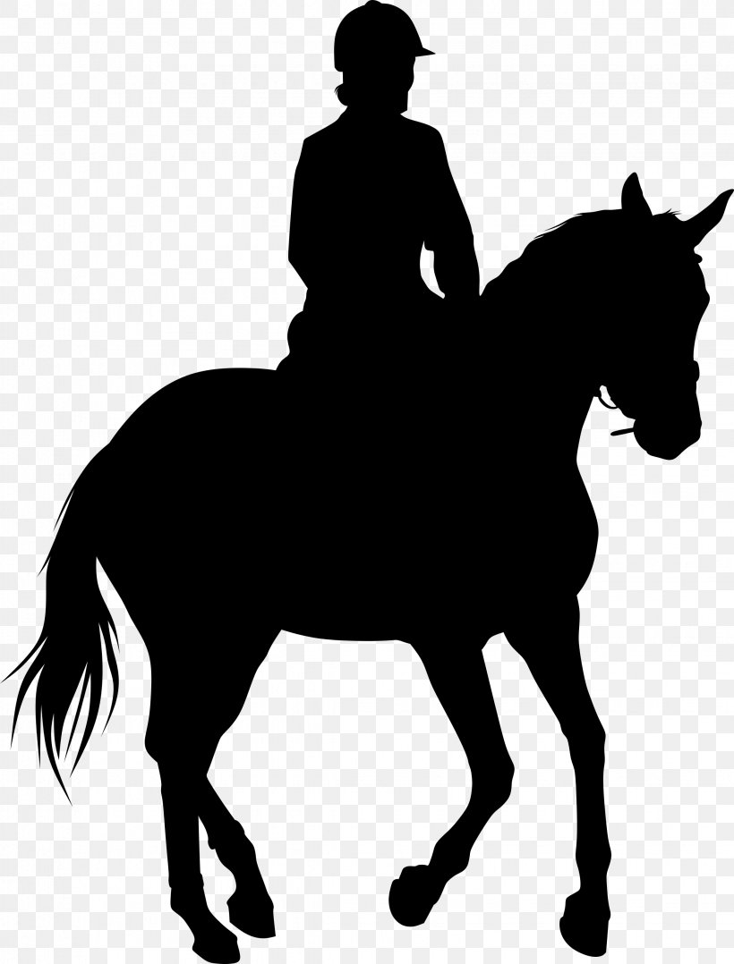 Equestrian Statue Silhouette Horse Png 2246x2955px Equestrian Statue Black And White Bridle Bull Riding Cartoon Download