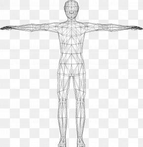 Human Body - Website Wireframe Human Body Clip Art PNG