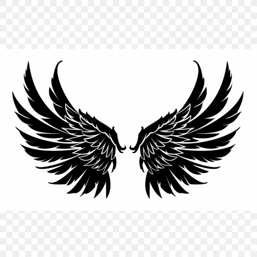 Logo Vector Graphics Image Graphic Design Png 850x850px Logo Beak Bird Bird Of Prey Black And
