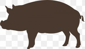 Hand-painted Wild Boar - Domestic Pig Graphic Design PNG