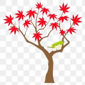 Plane Plant Stem - Autumn Maple Tree Maple Tree Autumn Tree PNG
